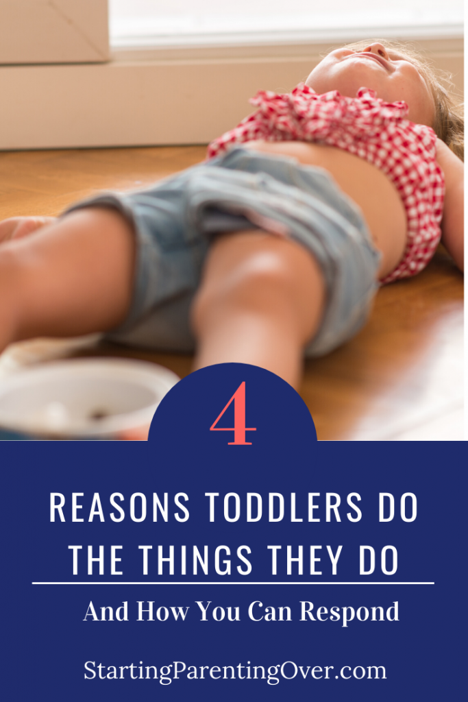 The key to dealing with difficult toddler behaviors is understanding the why.